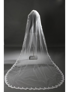 Delicate Cathedral Length Ivory Lace Wedding Veil with Sequin