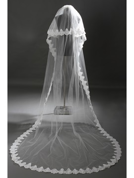 Gorgeous 2 Layer Cathedral Length Lace Wedding Veil