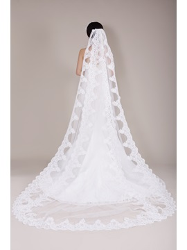 Incredible Long Lace Wedding Veil, Cathedral Train Bridal Veil