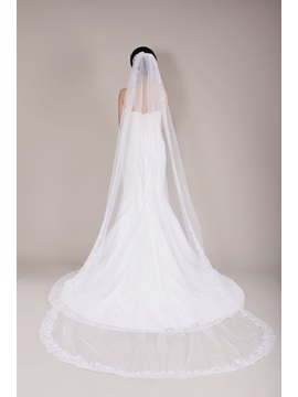 Ideal Chapel Length Appliques Edge Wedding Veil