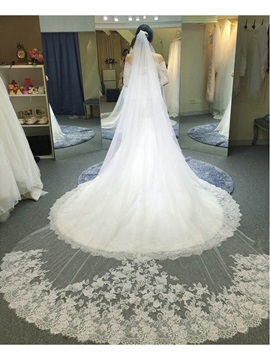 Sumptuous Tulle Lace Edge Royal Wedding Veil