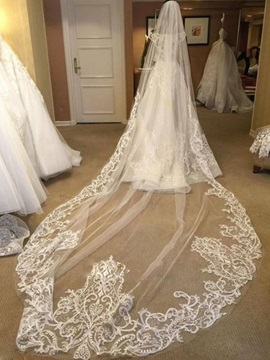 Captivating Appliques Tulle Wedding Veil