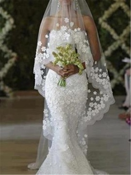 Amazing Appliques Edge Cathedral Veil