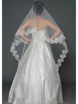 Amazing Long Lace Cathedral Wedding Veil