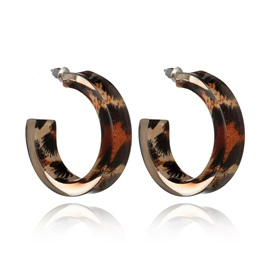 Leopard Pattern Acrylic Stud Earrings