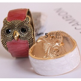 Unique Owl Alloy Women Bangle