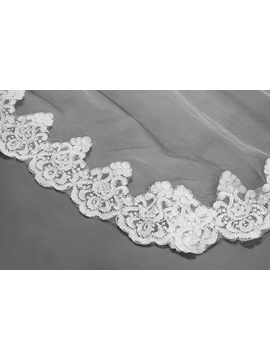 Elegant Cathedral Length Lace Edge Wedding Veil
