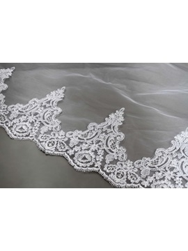 Chic Cathedral Length Appliques Edge Wedding Veil