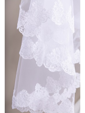 Cathedral Train Lace Trim Wedding Veil