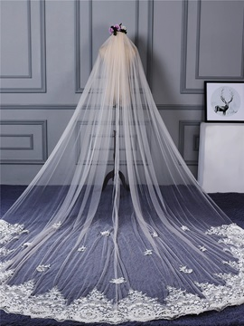 One Layer Appliques Edge Wedding Veil