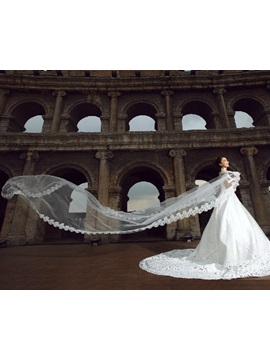 Cathedral Length White Tulle Wedding Veil with Appliques Edge