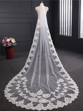 Wonderful Applique Edge Cathedral Wedding Veil
