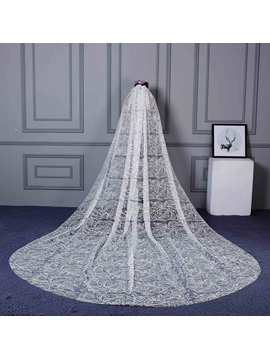 Vintage One Layer Lace Cathedral Veil