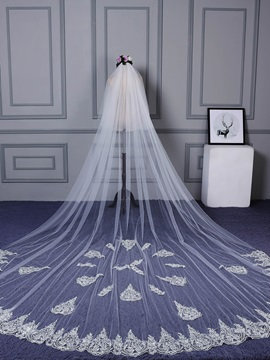 Amazing Appliques Tulle Wedding Veil