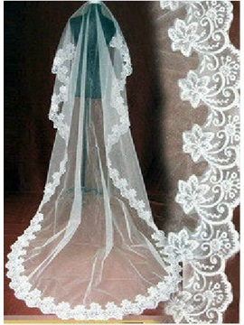 Delicate Cathedral Length Tulle Wedding Veil with Appliques Edge