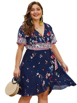 Plus Size Knee-Length Stringy Selvedge Short Sleeve A-Line Women's Dress