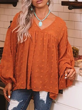 Appliques Lantern Sleeve Plain Mid-Length Long Sleeve Women's Blouse