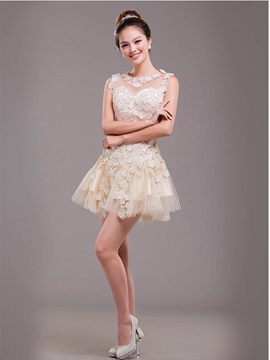 Chic A-Line Lace Short-Length Zipper-up Prom/ 16 Dress & amazing Sweet 16