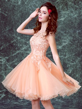 Pretty Scoop Neck Short Lace Sweet 16 Dress