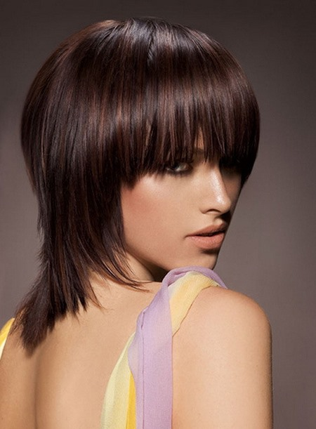 Smart Glamorous Straight Wig 100% Remy Human Hair about 12 Inches