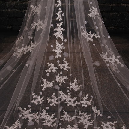 Appliques Cathedral Wedding Veil with Comb