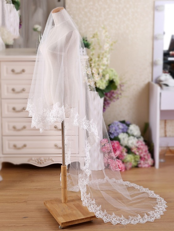 Pretty Appliques Edge Bridal Wedding Veil