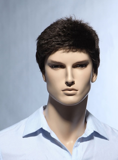 Short Straight Dark Brown Synthetic Wig For Men(Free Shipping)