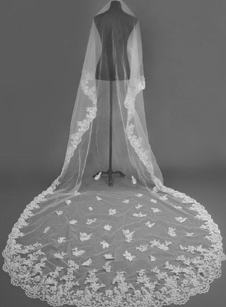 Gorgeous Cathedral Length Appliques Wedding Bride Veil