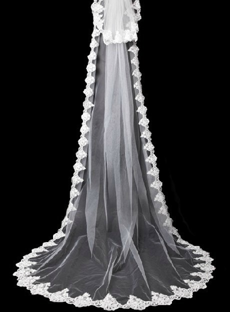 Stylish Cathedral Length White Tulle Lace Wedding Veil